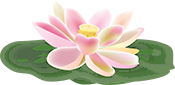 Lotus Flower with Leaves